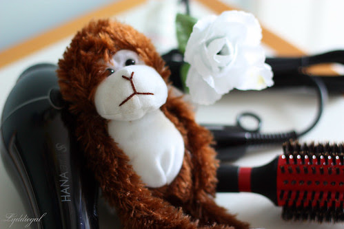 Misikko - monkey
