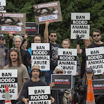 Online hate a growing concern between New Zealand's pro and anti-rodeo groups - Stuff.co.nz