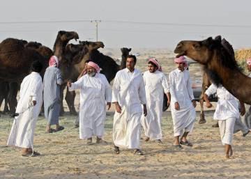 ¿Está deportando Arabia Saudí a las cabras y camellos de Qatar?