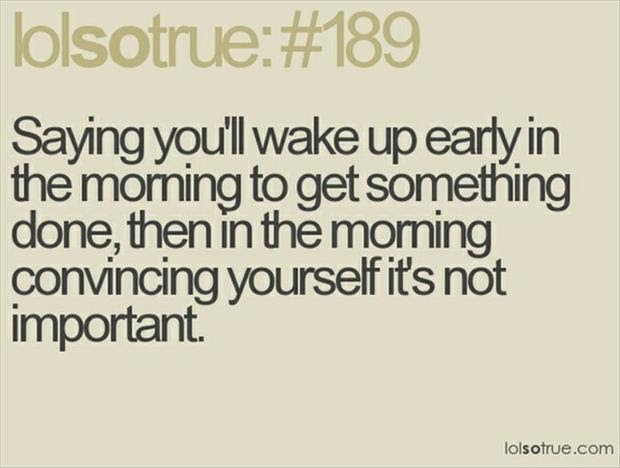 Wake Up Quotes Funny Funny Love Quotes