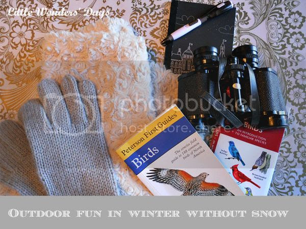 outdoor winter fun ideas without snow for kids