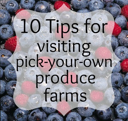 10 Tips for visiting pick your own produce farms!