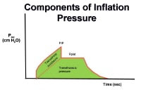 The components of mechanical ventilation inflatio...
