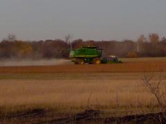 HarvestingatDusk