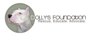 Dolly's Foundation
