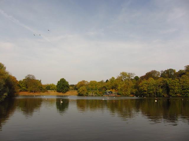 The Men's Bathing Pond
