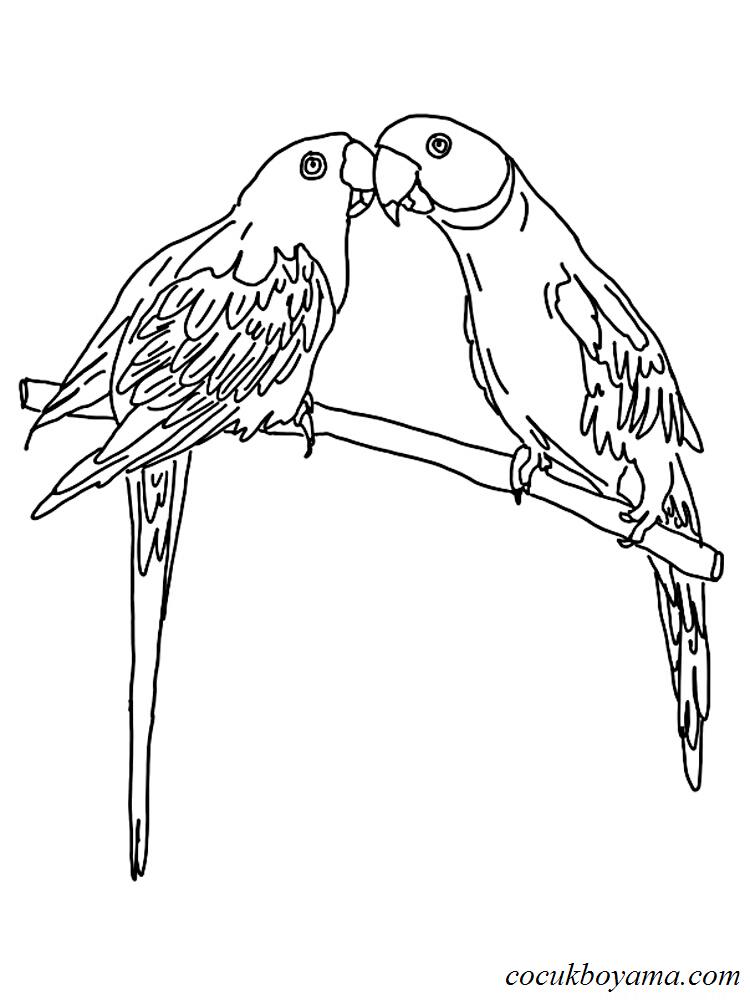 Muhabbet Kuşu 13 ücretsiz Boyama Resimleri