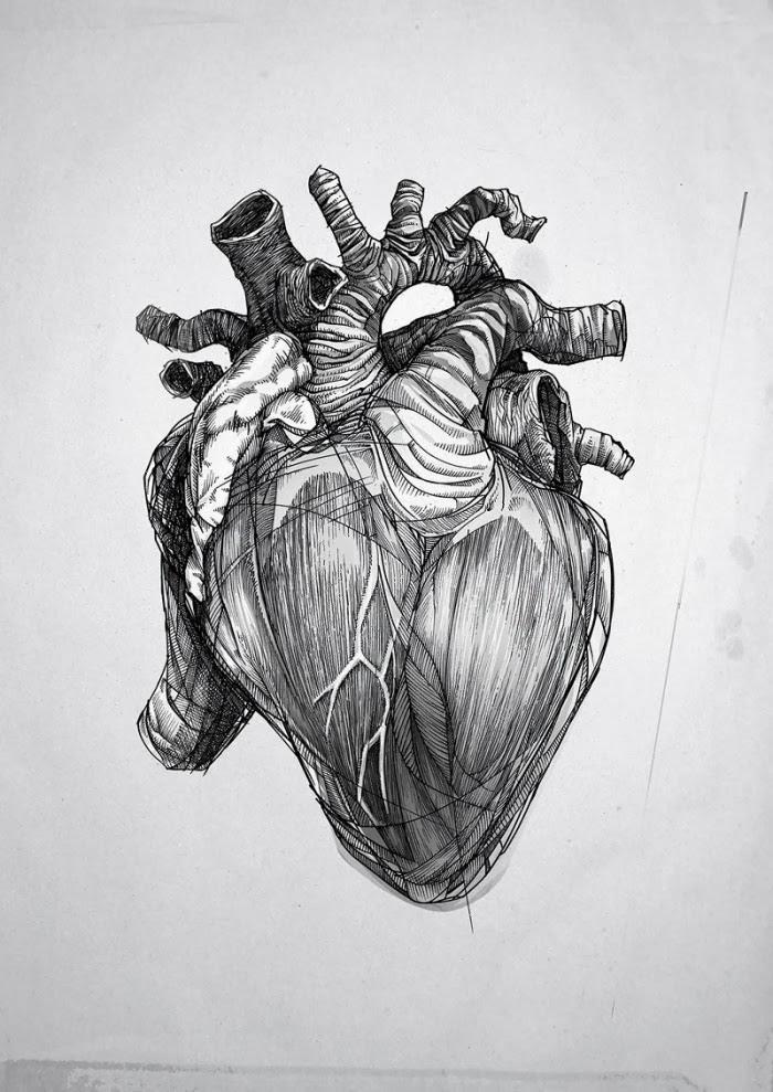 Pin De Rogelio Sanchez En Tattos Corazón Anatómico Arte Y Tatuaje