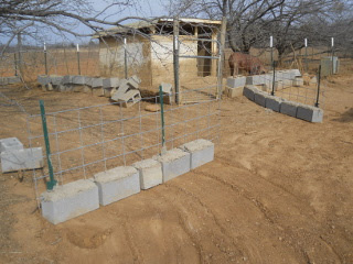 2 cattle panel pig fence sections in place
