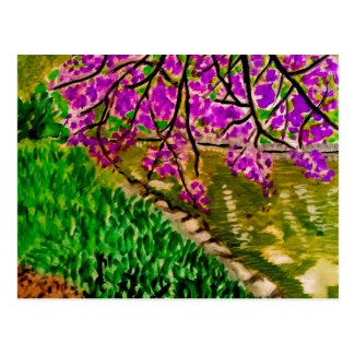 Cherry Blossom Impressionism Art on Postcard