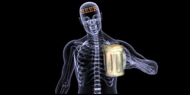 www.craftbrewingbusiness.com-skeleton-drinking-long