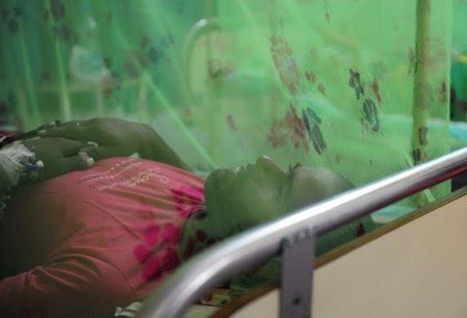 Haití reporta unos 503 casos de zika y anuncia recursos para combatir el virus