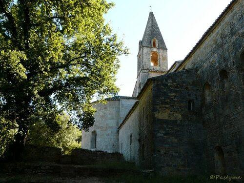 Le THORONET (VAR)