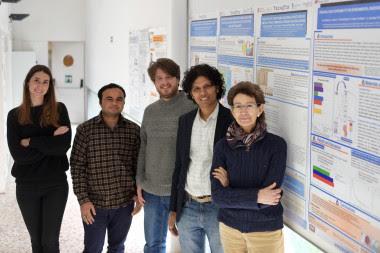 <p>Equipo investigador de la Universidad Rovira i Virgili. / URV</p>