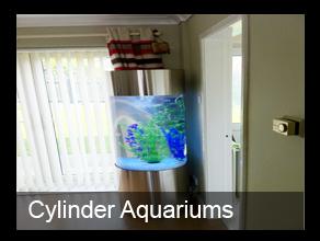 9100 Ide Design Aquarium Fish HD Terbaik Unduh Gratis
