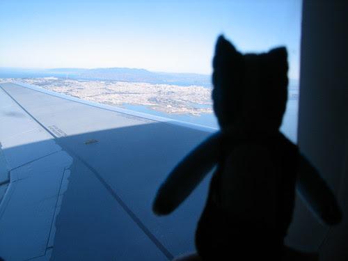 Shaggy Shadagrack over Colorado