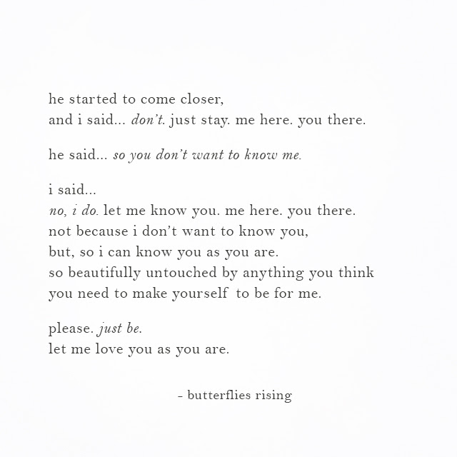 Butterflies Rising Poetry Quotes Words Inspiration