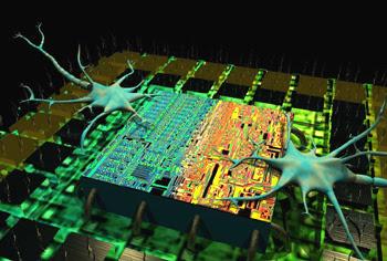 Charles Ostman, neural interface biochip