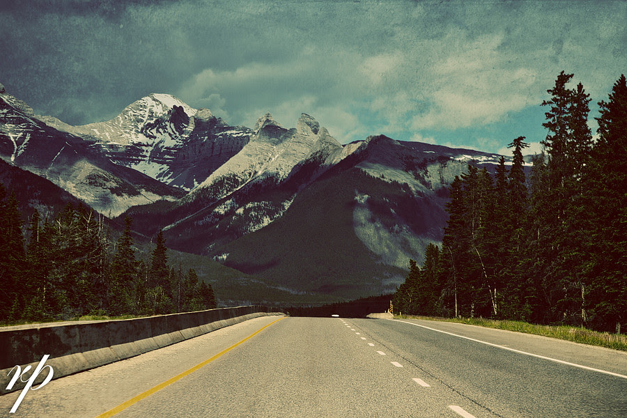 ~ 187/365 Road Home ~