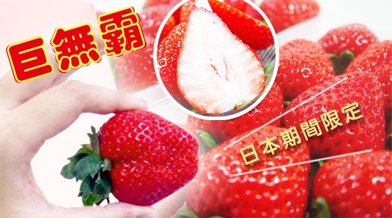 日本/熊本/奈良/福岡/草莓/限定/限量/水果/草莓季/果物/禮盒/送禮/禮品/下午茶/寄杯/進口/當季/野餐/春季/高檔