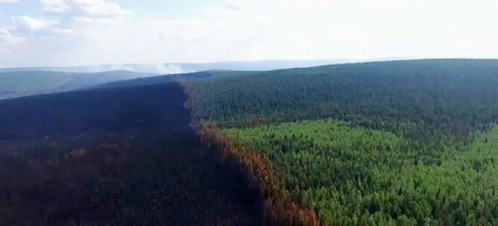 Consequences of fires in Irkutsk region