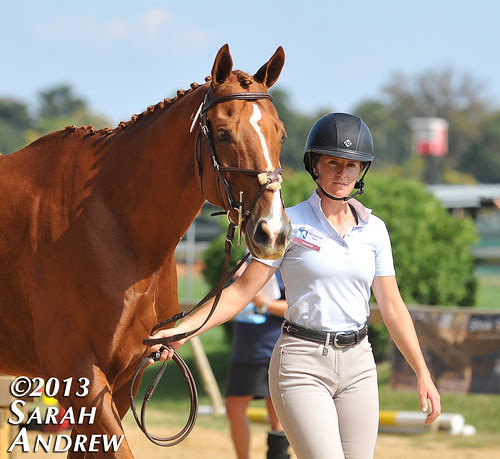 Retired Racehorse Training Project's first-annual Thoroughbred Makeover and National Symposium
