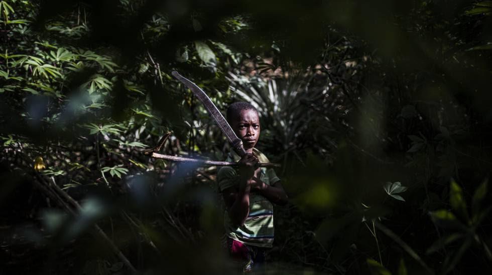 Moise, de 10 años, sostiene un machete durante su trabajo en los campos de cacao, cerca de Bodouakro, en el departamento de Daloa, en Costa de Marfil.