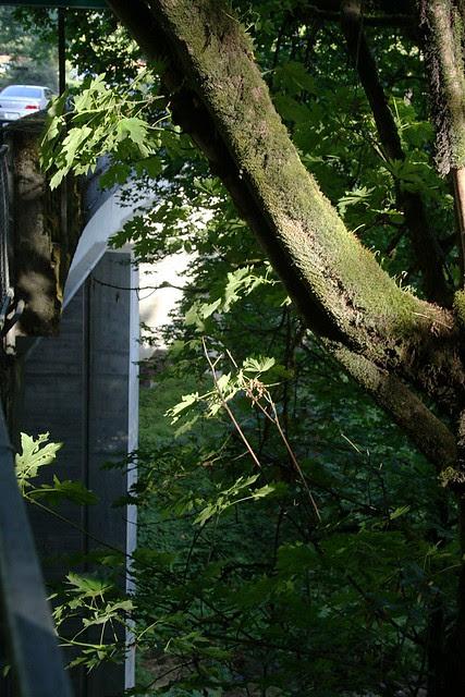 Oswego Creek Bridge