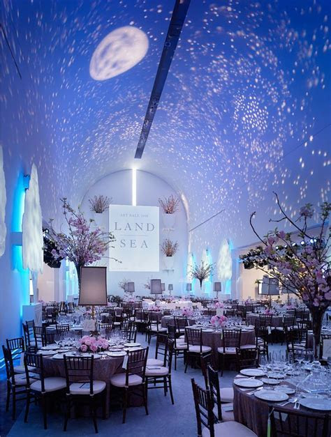 Starry sky ? Picture Perfect Event Design by Katherine