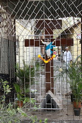 This Cross was Served a Demolition Notice ..But It Lives ..It Forgives .. by firoze shakir photographerno1