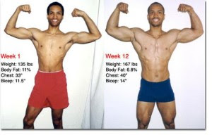 body fat percentage after bulking