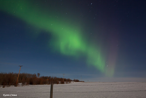 Northern Lights in Fort St John