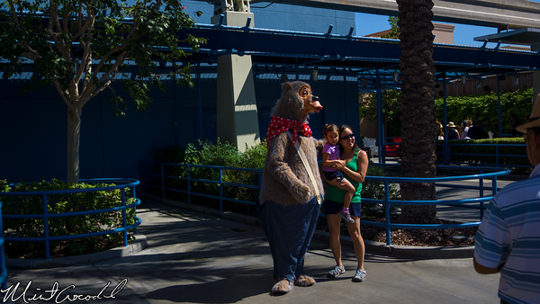 Disneyland Resort, Disney California Adventure, Hollywoodland, Characters, Country Bear