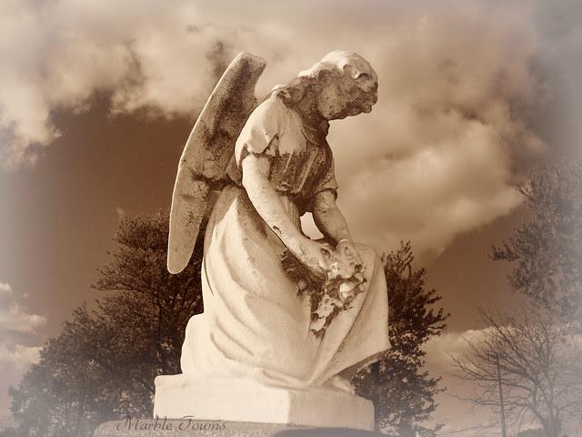 small angel2-Sandwich.jpg