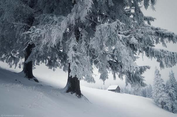 Χειμώνας στα Καρπάθια Όρη (3)