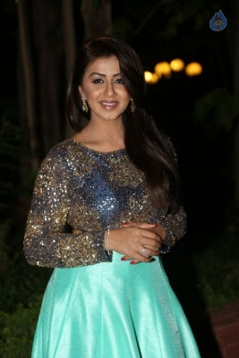 Nikki Galrani New Photos - 22 of 36