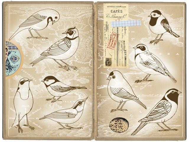 Digital Bird Collage