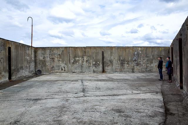 Biennale 2014 1