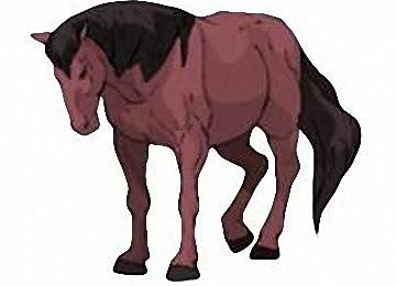 Kostenlose Ausmalbilder Pferde