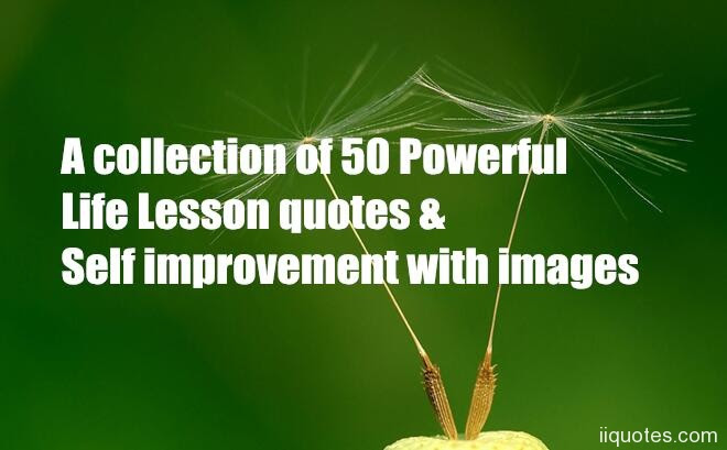 A Collection Of 50 Powerful Life Lesson Quotes Self Improvement