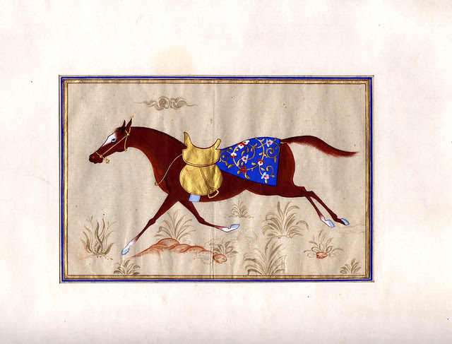 horse-bukhara