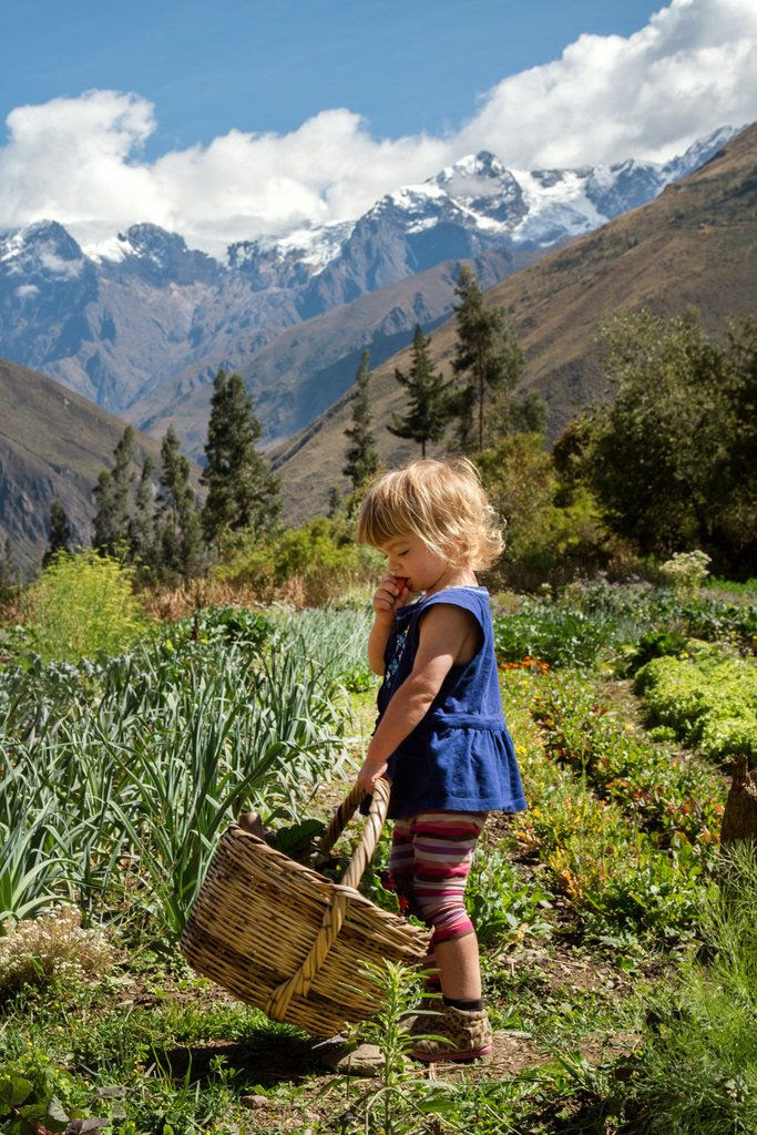 Colette Harleau munching on a carrot at an organic farm in Peru. Photo by Adam Harleau.