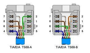 cat 5 100 bt wiring diagram image 2