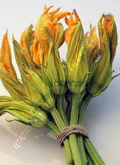 Flowers - Zucchini Blossoms Bouquet [03]