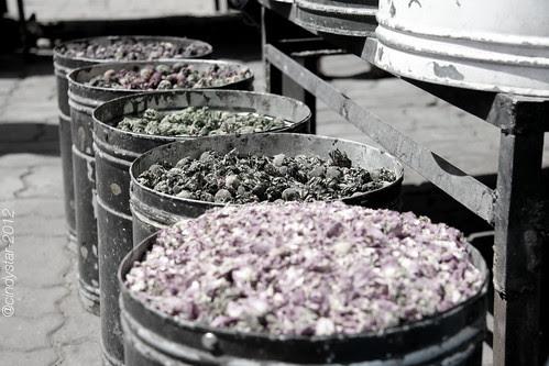 dried flower buds
