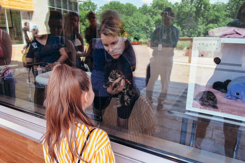 Nashville with Kids: Nashville Zoo's New Veterinary Center