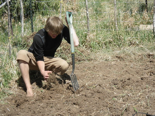 Drew working the land