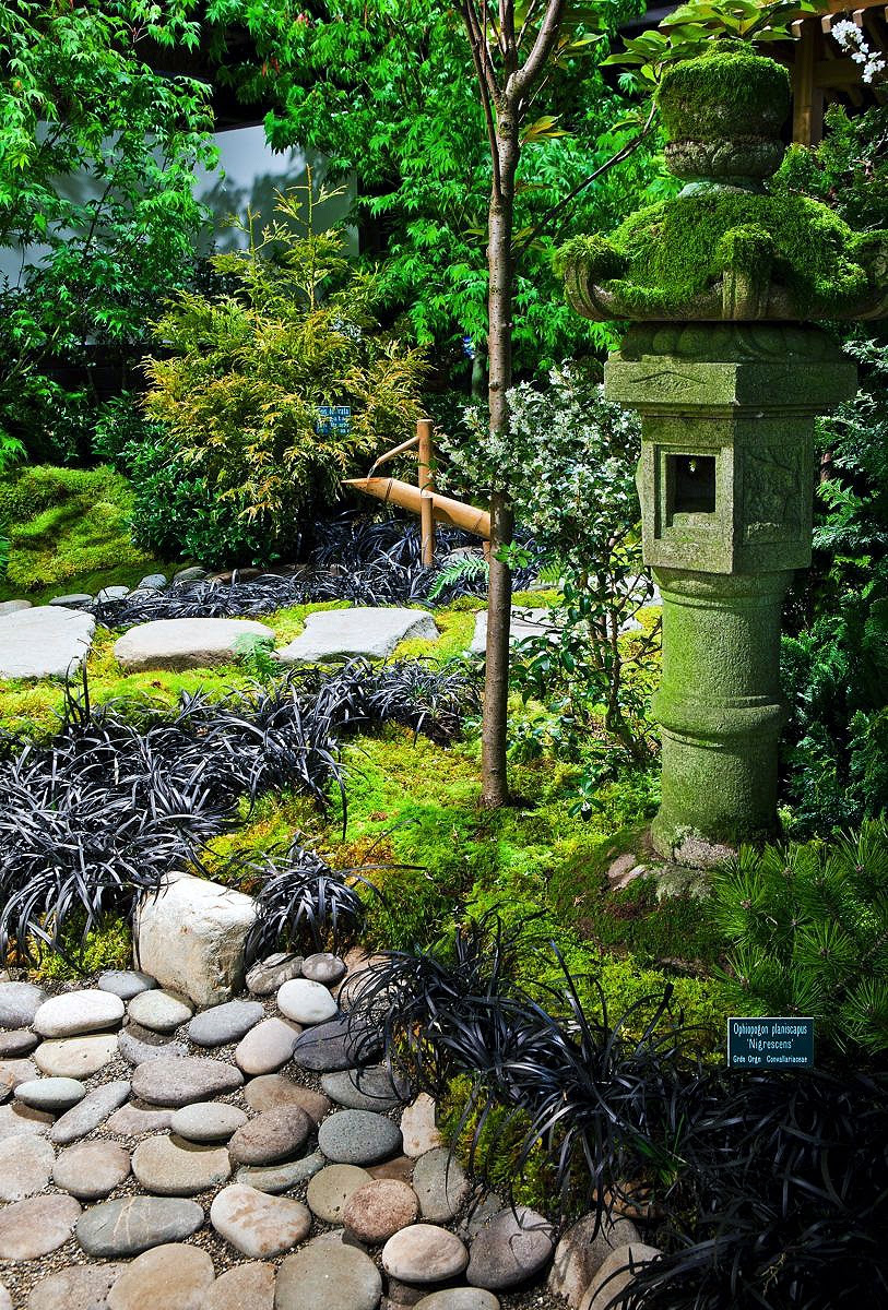 Small Space Japanese Garden - Kitchen Layout and Decorating Ideas