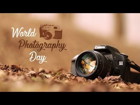World Photography Day 2020: Here Are Some Amazing And Beautiful Photographs For You