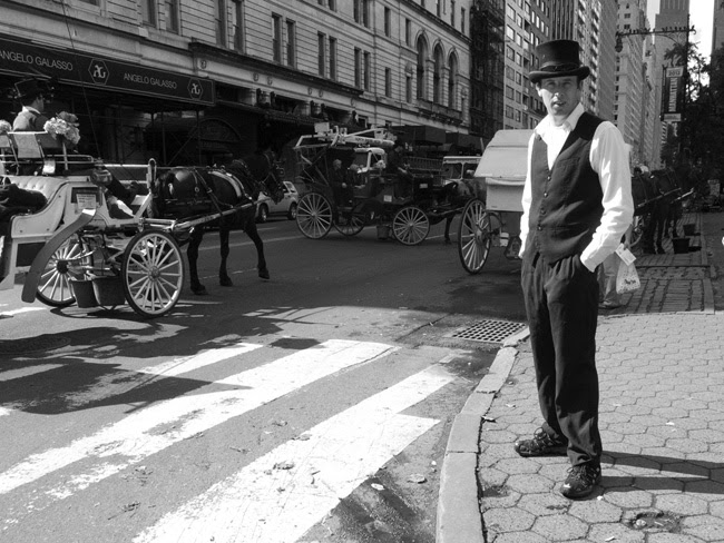 Carriage driver, nyc